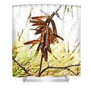Let Us Celebrate Another Successful Year  Shower Curtain