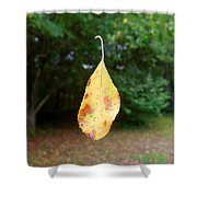 Levitation Shower Curtain