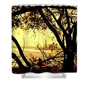 Liberty Fall Shower Curtain
