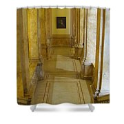 Library 2 Shower Curtain