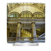 Library 6 Shower Curtain