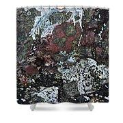 Lichen Abstract II Shower Curtain