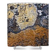 Lichen Pattern Series - 19 Shower Curtain