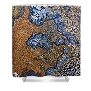Lichen Pattern Series - 35 Shower Curtain