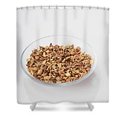 Licorice Root, Herbal Remedy Shower Curtain