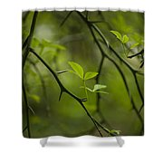 Life And Thorns Shower Curtain
