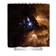 Life Cycle Of Stars Shower Curtain