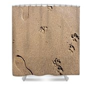 Footprints Mans Best Friend Shower Curtain