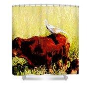 Life On The Farm V4 Shower Curtain