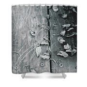 Light And Dark Shower Curtain