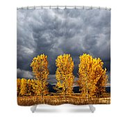 Light And Darkness Shower Curtain