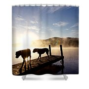Light Of My Life Boxer Dogs On Dock Shower Curtain