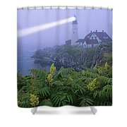 Lighthouse In The Evening Shower Curtain