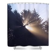 Lighting The Day Shower Curtain