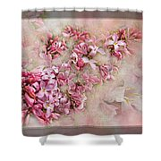 Lilacs And Wegia Shower Curtain