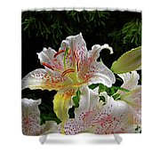 Lilies In The Rain Shower Curtain
