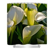 Lilies Of The Nile Shower Curtain