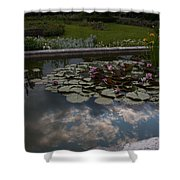 Lillies And Clouds Shower Curtain