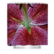 Lilly Heart Shower Curtain