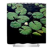 Lily Alone Shower Curtain
