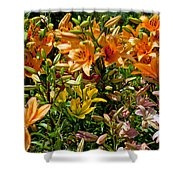 Lily Garden Bouquet  Shower Curtain
