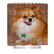 Lily - No 1 Shower Curtain