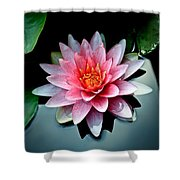 Lily Of The Pond Shower Curtain