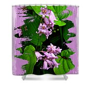 Lily Of The Valley - In The Pink #1 Shower Curtain