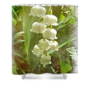 Lily Of The Valley - In White #2 Shower Curtain