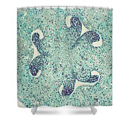 Lily Ovary Lm Shower Curtain