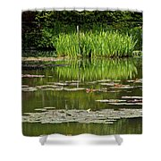Lily Pads At Giverney Shower Curtain