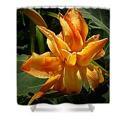 Lily Survival Shower Curtain