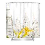 Lily Temple Funky Shower Curtain