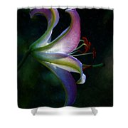 Lily's Inner Glow Shower Curtain