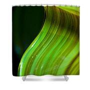 Lime Curl Ll Shower Curtain by Dana Kern