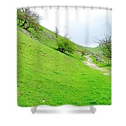 Lin Dale Shower Curtain by Rod Johnson