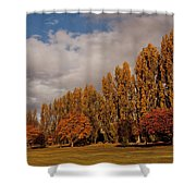 Line Of Trees Shower Curtain