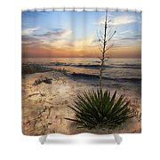 Linger By The Sea Shower Curtain