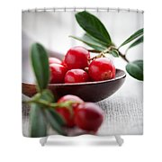 Lingonberries Shower Curtain