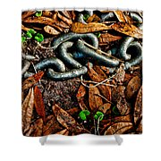 Links And Leaves Shower Curtain