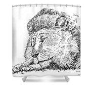 Lion-art-black-white Shower Curtain