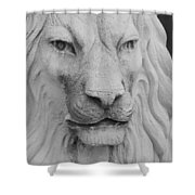 Lion In Stone Shower Curtain