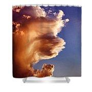 Lion King Cloud Shower Curtain