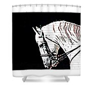 Lippizan Shower Curtain