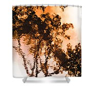 Liquid Tree Shower Curtain