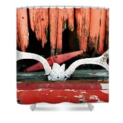 Little Antlers 3 Shower Curtain