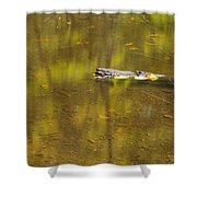 Little Carp River Bed 1 Shower Curtain