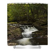 Little Carp River Falls 3 Shower Curtain