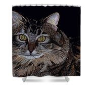 Little Girl - Maine Coon Cat Painting Shower Curtain