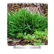 Little Grass Mound Shower Curtain